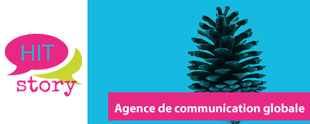 Hit Story, agence de communication globale